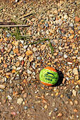 Lime green and Orange Slazenger Mini tennis ball washed up on the beach at Upnor on the River Medway, Kent, UK ALMTA0893| 写真素材・ストックフォト・画像・イラスト素材|アマナイメージズ