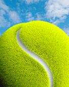 Tennis ball close up, sky backgrounds, s shaped yin yang path across a forest. Planet. ALM2BWXMC3| 写真素材・ストックフォト・画像・イラスト素材|アマナイメージズ