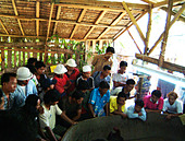 cockfight crowd spectators engrossed cockfight ban lamai travel tourism south east asia koh samui thailand thai oriental east fa ALMADC62E| 写真素材・ストックフォト・画像・イラスト素材|アマナイメージズ