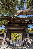 Hasedera Gate - Hase-dera Temple in Kamakura is officially named Kaiko-zan Jisho-in Hase-dera but commonly called Hase Kannon.  Hase-Dera has landscap ALMJ2RK24| 写真素材・ストックフォト・画像・イラスト素材|アマナイメージズ