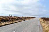 Road near Tongue, Lairg, Scotland ALMMNFCAB  写真素材・ストックフォト・画像・イラスト素材 アマナイメージズ