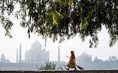 sweeping up the Taj Mahal ALM2BBD6EG| 写真素材・ストックフォト・画像・イラスト素材|アマナイメージズ