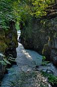 The Rogue River Gorge at Prospect, Oregon ALMEA2NGD| 写真素材・ストックフォト・画像・イラスト素材|アマナイメージズ