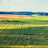 Rural summer landscape ALMM4HXWB  写真素材・ストックフォト・画像・イラスト素材 アマナイメージズ