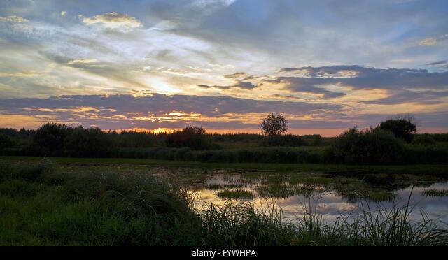 Panoramic summer landscape ALMFYWHPA| 写真素材・ストックフォト・画像・イラスト素材|アマナイメージズ