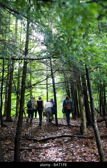 A group of people hike through a forest surrounding Rosendale, NY during a Mushroom hunt. ALMBAT1F8  写真素材・ストックフォト・画像・イラスト素材 アマナイメージズ