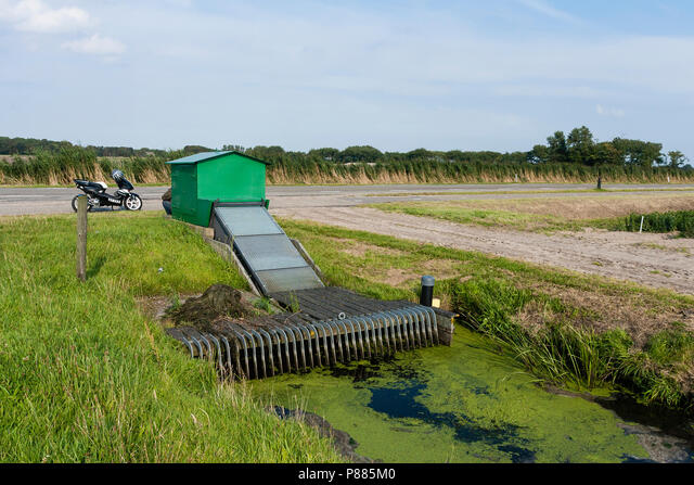 Gemaal bij sloot met kroos; Water pumping station at ditch covered by duckweed ALMP885M0| 写真素材・ストックフォト・画像・イラスト素材|アマナイメージズ