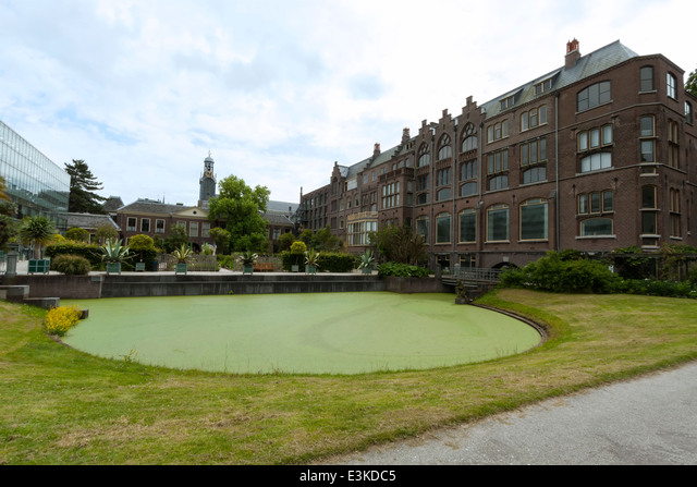 Wide angle view from Hortus Botanicus on The Winter Garden glasshouse and the Academy building, Leiden, The Netherlands. ALME3KDC5| 写真素材・ストックフォト・画像・イラスト素材|アマナイメージズ