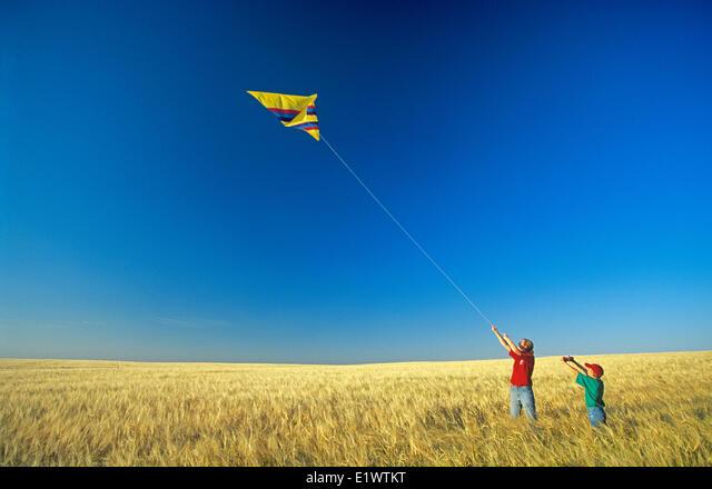 children flying a kite in a mature barley field, near Ponteix, Saskatchewan,  Canada ALME1WTKT  写真素材・ストックフォト・画像・イラスト素材 アマナイメージズ
