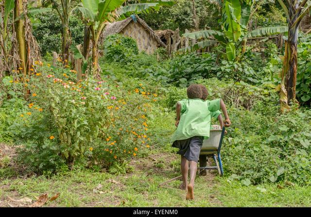 Children playing with wheelbarrow in school garden, Vanuatu ALMEYENM0  写真素材・ストックフォト・画像・イラスト素材 アマナイメージズ