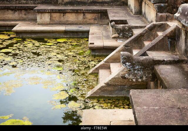 Sri Lanka - Polonnaruwa, Ancient City area, ruins of ancient royal residence,  UNESCO World Heritage Site ALMF78E5W| 写真素材・ストックフォト・画像・イラスト素材|アマナイメージズ