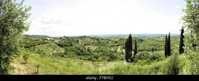 Istria, Croatia, landscape, Krasica ALMF7BH52  写真素材・ストックフォト・画像・イラスト素材 アマナイメージズ
