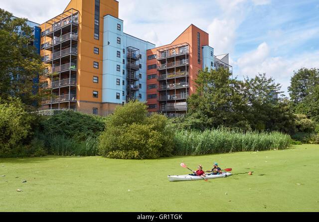 People kayaking through common duckweed on the River Lea near Bow, London England United Kingdom UK ALMGR1TGK| 写真素材・ストックフォト・画像・イラスト素材|アマナイメージズ