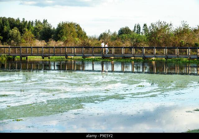 Florida, Gainesville, Micanopy, Paynes Prairie, LaChua Trail Trailhead, Alachua Sink, state park, raised nature boardwalk, prairie marsh wetlands, duc ALMP9E5Y2| 写真素材・ストックフォト・画像・イラスト素材|アマナイメージズ