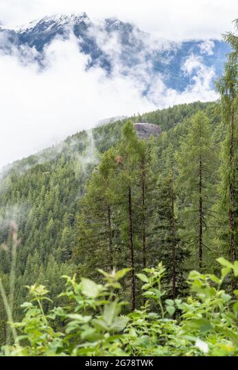 Europe, Austria, Tyrol, Ötztal Alps, Ötztal, Längenfeld, view over the cloud-covered mountain forest ALM2G78TWK  写真素材・ストックフォト・画像・イラスト素材 アマナイメージズ