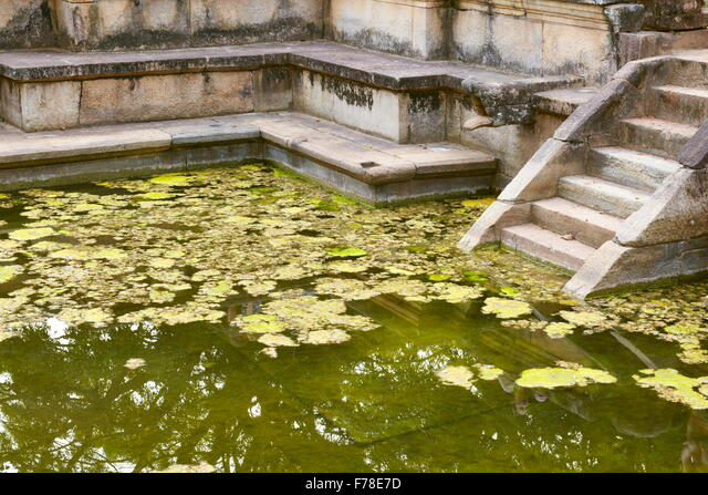 Sri Lanka - Polonnaruwa, Ancient City area, ruins of ancient royal residence, UNESCO World Heritage Site ALMF78E7D| 写真素材・ストックフォト・画像・イラスト素材|アマナイメージズ