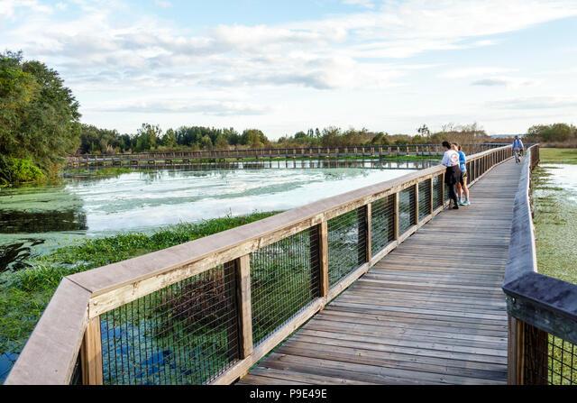 Florida, Gainesville, Micanopy, Paynes Prairie, LaChua Trail Trailhead, Alachua Sink, state park, raised nature boardwalk, prairie marsh wetlands, duc ALMP9E49E| 写真素材・ストックフォト・画像・イラスト素材|アマナイメージズ