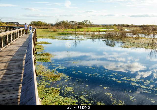 Florida, Gainesville, Micanopy, Paynes Prairie, LaChua Trail Trailhead, Alachua Sink, state park, raised nature boardwalk, prairie marsh wetlands, adu ALMP9E5MG| 写真素材・ストックフォト・画像・イラスト素材|アマナイメージズ