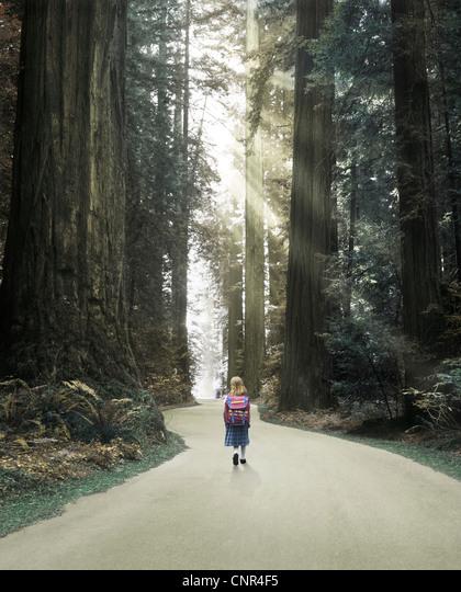 Young girl walking through an enchanted forest ALMCNR4F5  写真素材・ストックフォト・画像・イラスト素材 アマナイメージズ