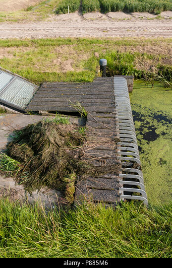 Gemaal bij sloot met kroos; Water pumping station at ditch covered by duckweed ALMP885M6| 写真素材・ストックフォト・画像・イラスト素材|アマナイメージズ