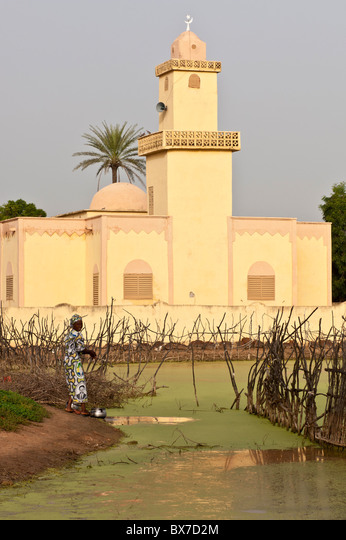 Yellow coloured, modern shaped, mosque in front of a duckweed covered pond in a rural village in Mali, West Africa. ALMBX7D2M| 写真素材・ストックフォト・画像・イラスト素材|アマナイメージズ