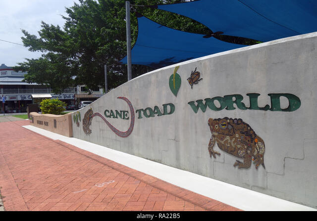 Cane Toad World, celebrating the site where these now notorious invasive pests were first released in Australia, Gordonvale, near Cairns, Queensland,  ALMRA22B5| 写真素材・ストックフォト・画像・イラスト素材|アマナイメージズ