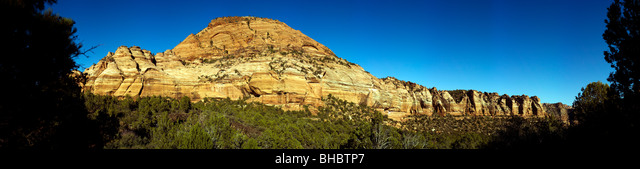 Designated in 1919, Zion is Utah's oldest national park. The park is known for its incredible canyons. Stock photo for sale ALMBHBTP7  写真素材・ストックフォト・画像・イラスト素材 アマナイメージズ