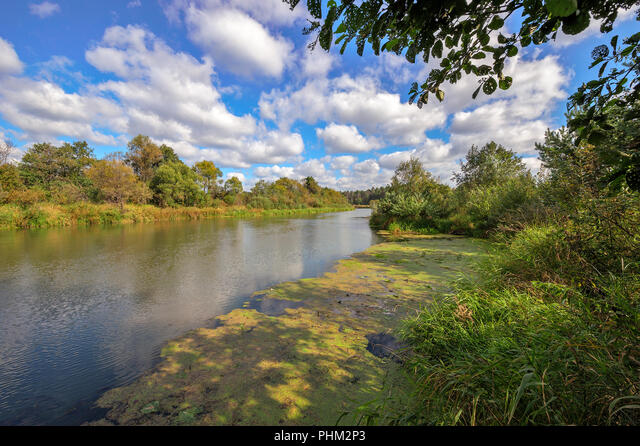 Summer landscape with river and forest ALMPHM2P3| 写真素材・ストックフォト・画像・イラスト素材|アマナイメージズ